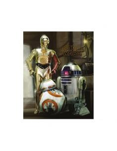 Star Wars Set de 5 Pósteres STAR WARS EPISODE VII DROIDS
